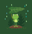 a cute frog standing and holding a leaf vector image vector image