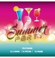 Advertising icon Summer Party and Disco vector image vector image