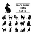 cat breeds set icons in black style big vector image vector image