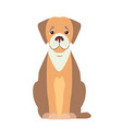 cute beagle dog cartoon flat icon vector image vector image