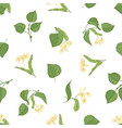 floral seamless pattern with flowering linden vector image
