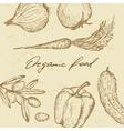 Organic food set vector image vector image