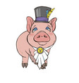 pig girl is a fashionista vector image vector image