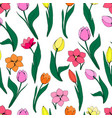 seamless floral pattern with tulips on white vector image