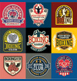 boxing academy badges and symbols collection vector image