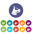 bull terrier dog set icons vector image