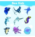 Colorful set of marine animals vector image vector image