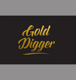 gold digger gold word text typography vector image vector image
