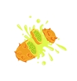 Kiwano Cut In The Air Splashing The Juice vector image vector image