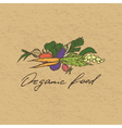 Organic food badge vector image vector image