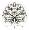 ornamental Lotus vector image vector image