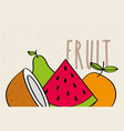watermelon coconut orange pear fruit tasty banner vector image
