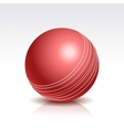 a Cricket Ball vector image vector image