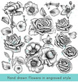 collection high detailed flowers for design vector image vector image