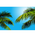 painted blue sky with palm leaves vector image vector image