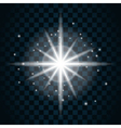 Shine star sparkle icon 14a vector image vector image