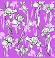 trend violet flowers vector image vector image