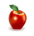 detailed big shiny red apple vector image