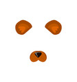 face of bear cute animal-bear face for carnival vector image vector image