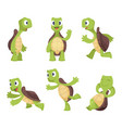 funny cartoon characters of turtles in various vector image