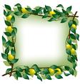Lemon branch frame vector image vector image