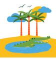 terrarium tropical island banner vector image