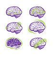 all about brain vector image vector image