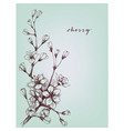 artistic flowers cherry floral branch vector image