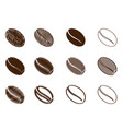 coffee bean - brown color vector image vector image