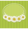 Floral invitation design vector image