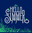 hello summer lettering sign vector image vector image