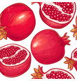 pomegranate fruits pattern vector image vector image