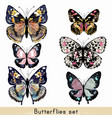 set of realistic colorful butterflies for design vector image vector image