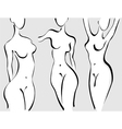 Slim woman body vector image vector image