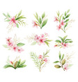 watercolor set bouquets pink flowers vector image vector image