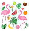 with summer symbols tropical fruits vector image