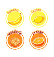 four stickers with different fruits banana lemon vector image