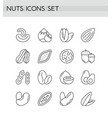nuts icons line outline set vector image vector image