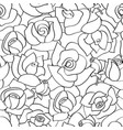 seamless pattern with line roses hand vector image vector image