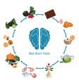 brain foods infographics brain foods infographics vector image vector image