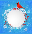 christmas banner with snowflakes and cardinal bird vector image vector image