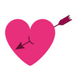 cute heart in love with arrow decoration vector image vector image