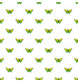 goliath birdwing butterfly pattern seamless vector image