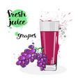 grapes juice fresh hand drawn watercolor fruits vector image vector image