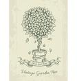 Hand drawn vintage garden vector image vector image