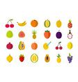 fruits icon set flat style vector image
