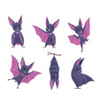 bat night wild flying scary animals mouse vampire vector image vector image