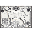 Cut of Lamb on Vintage Page vector image