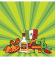 mexican party card vector image vector image