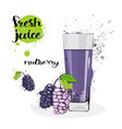 mulberry juice fresh hand drawn watercolor fruits vector image